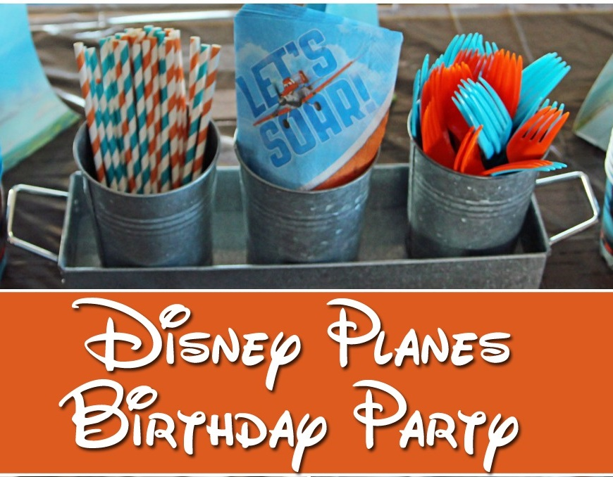 Disney Planes and Planes 2 Party